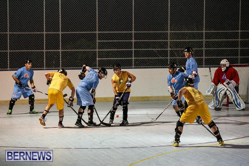 California-Golden-Seals-vs-Quebec-Nordiques-Bermuda-Ball-Hockey-January-21-2015-16