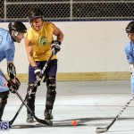 California Golden Seals vs Quebec Nordiques Bermuda Ball Hockey, January 21 2015-17