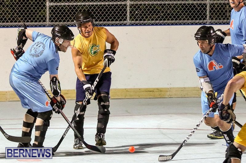 California-Golden-Seals-vs-Quebec-Nordiques-Bermuda-Ball-Hockey-January-21-2015-17
