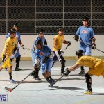 California Golden Seals vs Quebec Nordiques Bermuda Ball Hockey, January 21 2015-18
