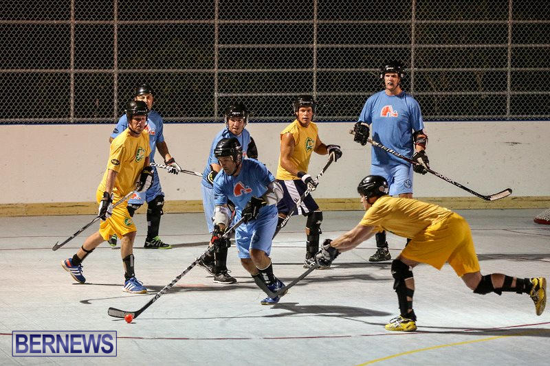 California-Golden-Seals-vs-Quebec-Nordiques-Bermuda-Ball-Hockey-January-21-2015-18