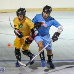 California Golden Seals vs Quebec Nordiques Bermuda Ball Hockey, January 21 2015-19