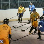California Golden Seals vs Quebec Nordiques Bermuda Ball Hockey, January 21 2015-2