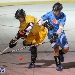 California Golden Seals vs Quebec Nordiques Bermuda Ball Hockey, January 21 2015-20