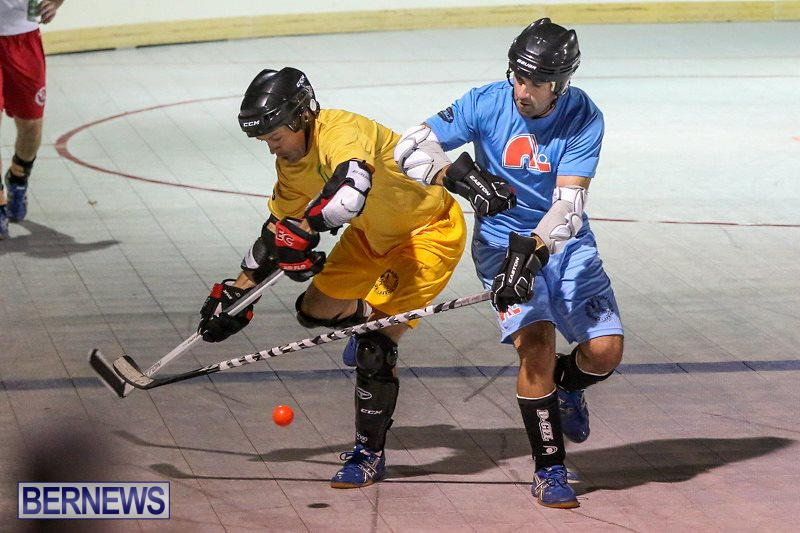 California-Golden-Seals-vs-Quebec-Nordiques-Bermuda-Ball-Hockey-January-21-2015-20