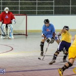 California Golden Seals vs Quebec Nordiques Bermuda Ball Hockey, January 21 2015-21