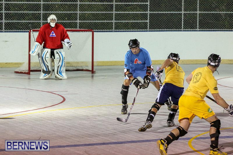 California-Golden-Seals-vs-Quebec-Nordiques-Bermuda-Ball-Hockey-January-21-2015-21