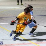 California Golden Seals vs Quebec Nordiques Bermuda Ball Hockey, January 21 2015-22