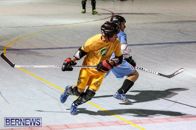 California-Golden-Seals-vs-Quebec-Nordiques-Bermuda-Ball-Hockey-January-21-2015-22