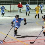 California Golden Seals vs Quebec Nordiques Bermuda Ball Hockey, January 21 2015-23