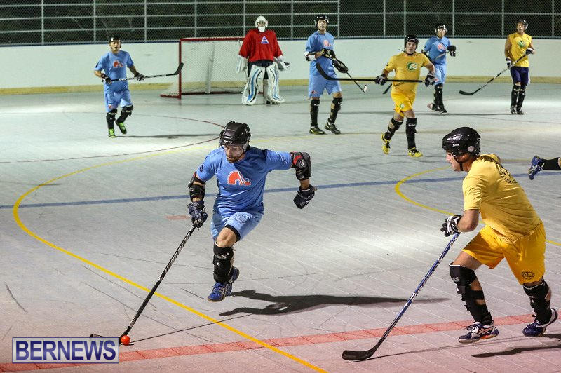 California-Golden-Seals-vs-Quebec-Nordiques-Bermuda-Ball-Hockey-January-21-2015-23