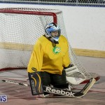California Golden Seals vs Quebec Nordiques Bermuda Ball Hockey, January 21 2015-24