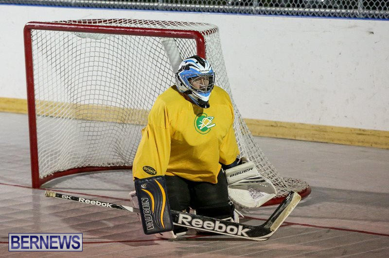 California-Golden-Seals-vs-Quebec-Nordiques-Bermuda-Ball-Hockey-January-21-2015-24