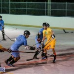 California Golden Seals vs Quebec Nordiques Bermuda Ball Hockey, January 21 2015-25