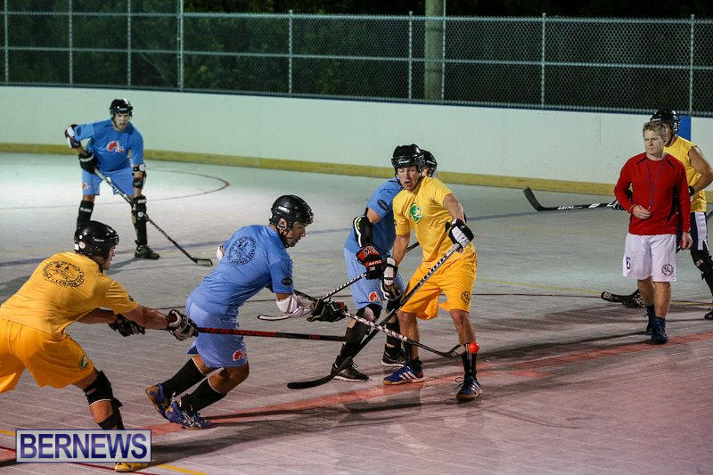 California-Golden-Seals-vs-Quebec-Nordiques-Bermuda-Ball-Hockey-January-21-2015-25