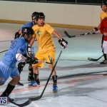 California Golden Seals vs Quebec Nordiques Bermuda Ball Hockey, January 21 2015-26