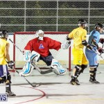 California Golden Seals vs Quebec Nordiques Bermuda Ball Hockey, January 21 2015-28