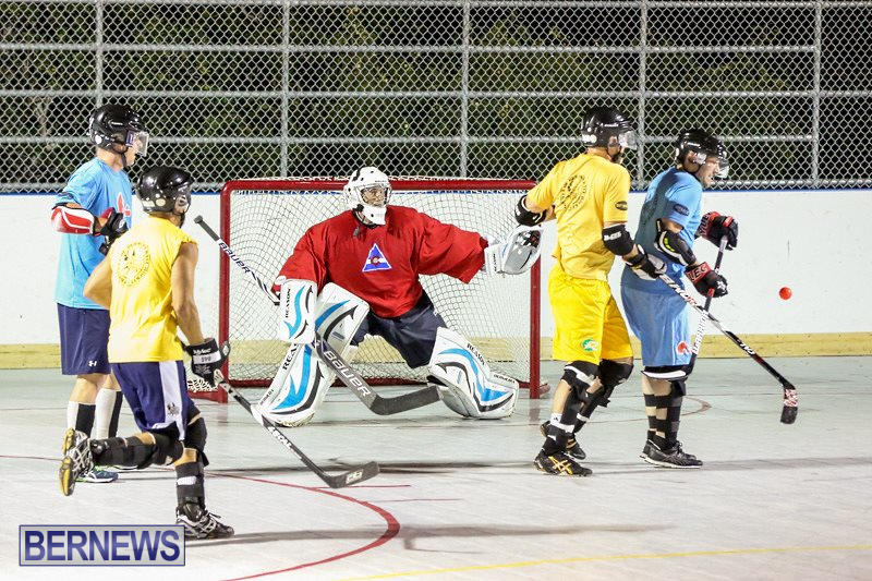 California-Golden-Seals-vs-Quebec-Nordiques-Bermuda-Ball-Hockey-January-21-2015-28