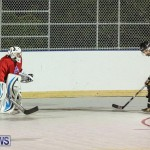 California Golden Seals vs Quebec Nordiques Bermuda Ball Hockey, January 21 2015-29