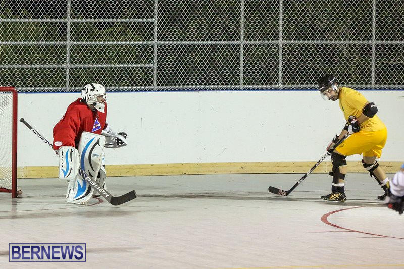 California-Golden-Seals-vs-Quebec-Nordiques-Bermuda-Ball-Hockey-January-21-2015-29