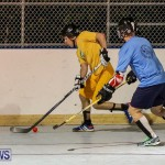 California Golden Seals vs Quebec Nordiques Bermuda Ball Hockey, January 21 2015-3