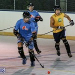 California Golden Seals vs Quebec Nordiques Bermuda Ball Hockey, January 21 2015-30