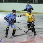 California Golden Seals vs Quebec Nordiques Bermuda Ball Hockey, January 21 2015-31