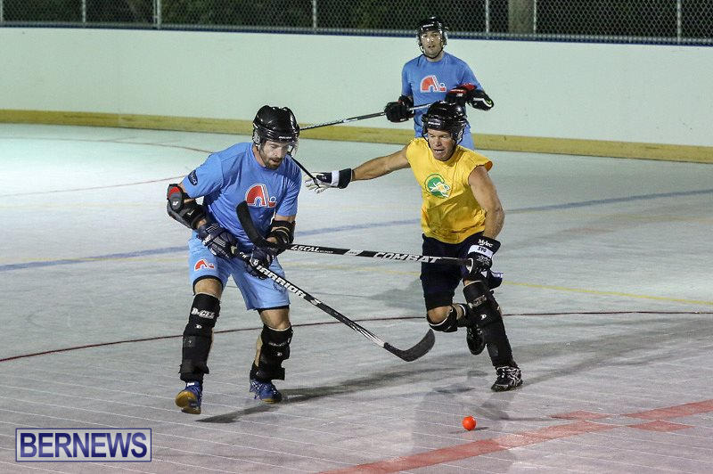 California-Golden-Seals-vs-Quebec-Nordiques-Bermuda-Ball-Hockey-January-21-2015-31