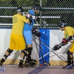 California Golden Seals vs Quebec Nordiques Bermuda Ball Hockey, January 21 2015-33