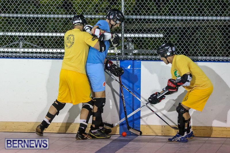 California-Golden-Seals-vs-Quebec-Nordiques-Bermuda-Ball-Hockey-January-21-2015-33