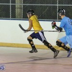 California Golden Seals vs Quebec Nordiques Bermuda Ball Hockey, January 21 2015-34