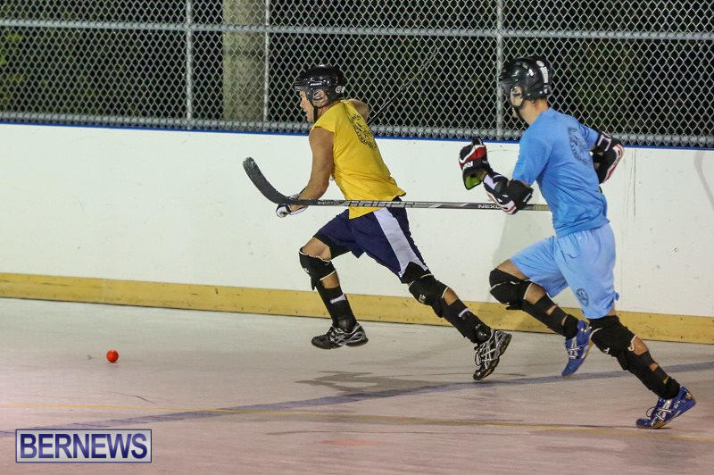 California-Golden-Seals-vs-Quebec-Nordiques-Bermuda-Ball-Hockey-January-21-2015-34