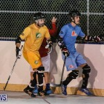 California Golden Seals vs Quebec Nordiques Bermuda Ball Hockey, January 21 2015-35