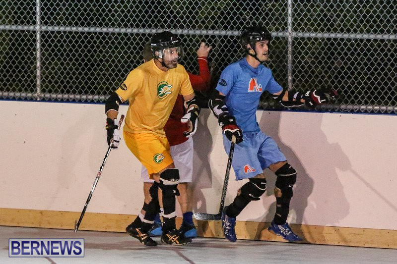 California-Golden-Seals-vs-Quebec-Nordiques-Bermuda-Ball-Hockey-January-21-2015-35