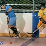 California Golden Seals vs Quebec Nordiques Bermuda Ball Hockey, January 21 2015-36