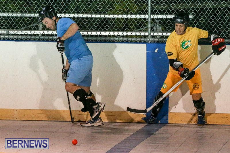 California-Golden-Seals-vs-Quebec-Nordiques-Bermuda-Ball-Hockey-January-21-2015-36