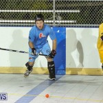 California Golden Seals vs Quebec Nordiques Bermuda Ball Hockey, January 21 2015-37