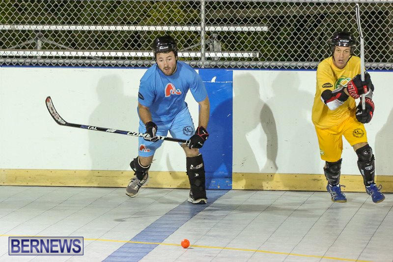 California-Golden-Seals-vs-Quebec-Nordiques-Bermuda-Ball-Hockey-January-21-2015-37