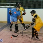 California Golden Seals vs Quebec Nordiques Bermuda Ball Hockey, January 21 2015-38