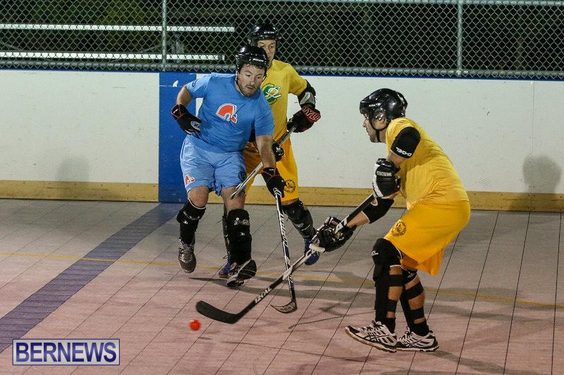 California-Golden-Seals-vs-Quebec-Nordiques-Bermuda-Ball-Hockey-January-21-2015-38