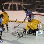 California Golden Seals vs Quebec Nordiques Bermuda Ball Hockey, January 21 2015-39