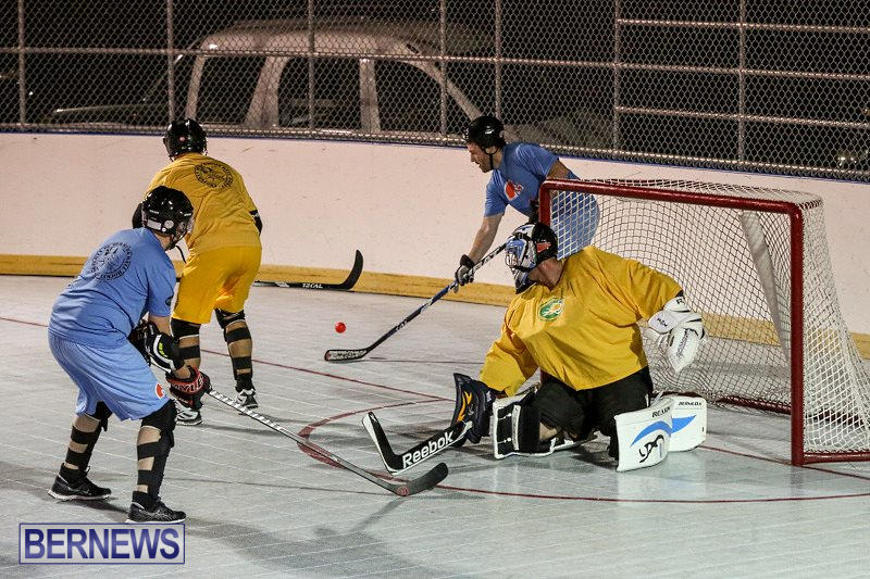 California-Golden-Seals-vs-Quebec-Nordiques-Bermuda-Ball-Hockey-January-21-2015-39