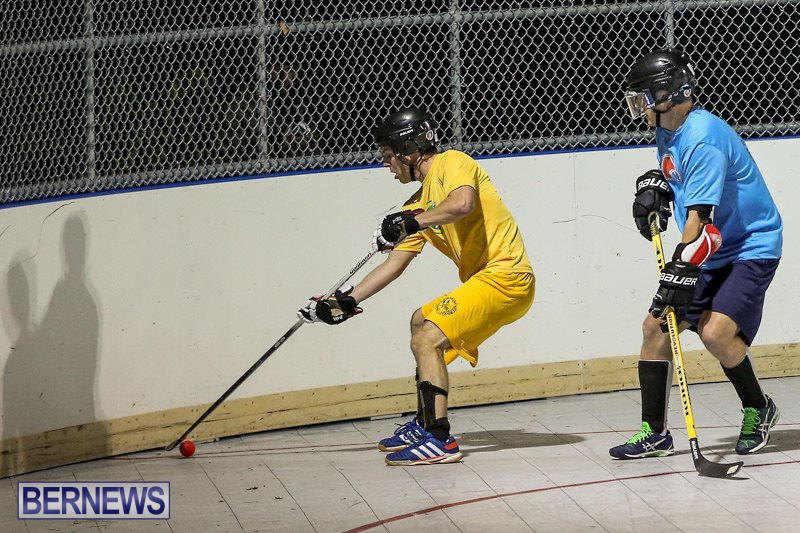 California-Golden-Seals-vs-Quebec-Nordiques-Bermuda-Ball-Hockey-January-21-2015-4