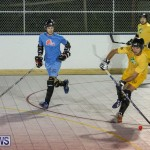 California Golden Seals vs Quebec Nordiques Bermuda Ball Hockey, January 21 2015-40