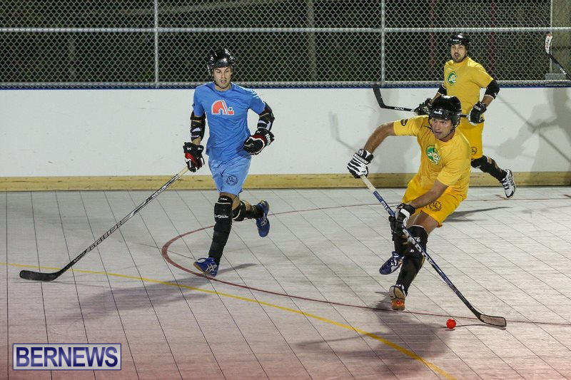 California-Golden-Seals-vs-Quebec-Nordiques-Bermuda-Ball-Hockey-January-21-2015-40