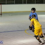 California Golden Seals vs Quebec Nordiques Bermuda Ball Hockey, January 21 2015-41