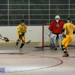 California Golden Seals vs Quebec Nordiques Bermuda Ball Hockey, January 21 2015-42