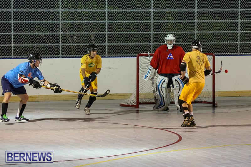 California-Golden-Seals-vs-Quebec-Nordiques-Bermuda-Ball-Hockey-January-21-2015-42