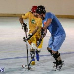 California Golden Seals vs Quebec Nordiques Bermuda Ball Hockey, January 21 2015-43