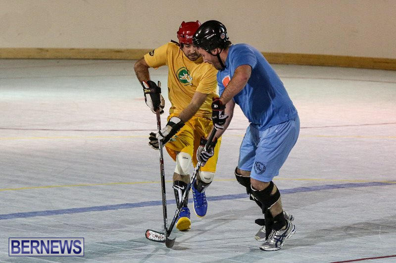 California-Golden-Seals-vs-Quebec-Nordiques-Bermuda-Ball-Hockey-January-21-2015-43